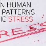 4 common human response patterns to chronic stress